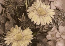 Joy of Flowers