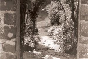 fairy-garden-1401404996-jpg